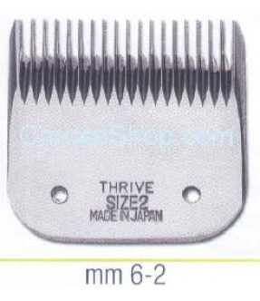 PETTINE TESTINA PER TOSATRICE THRIVE 6 MM SIZE 2