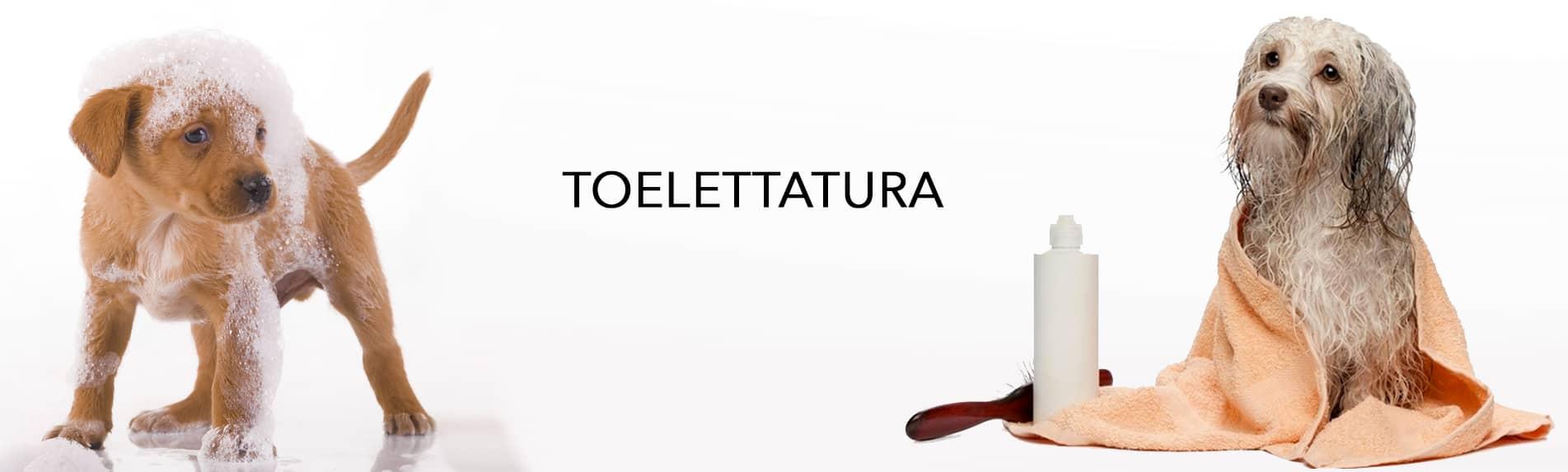 IN QUESTA CATEGORIA TROVERAI PRODOTTI PER TOELETTATURA-PROFESSIONALE-DI-ANIMALI CANI CAVALLI PECORE